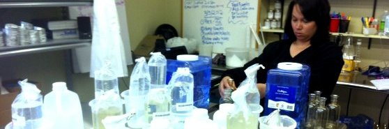 how to become an accredited laboratory